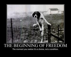 beginningoffreedom